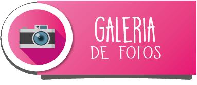 bannerss-idemoe2-galery