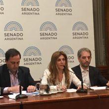 IDEMOE expuso en el Senado de la Nación sobre Financiamiento de los Partidos Políticos