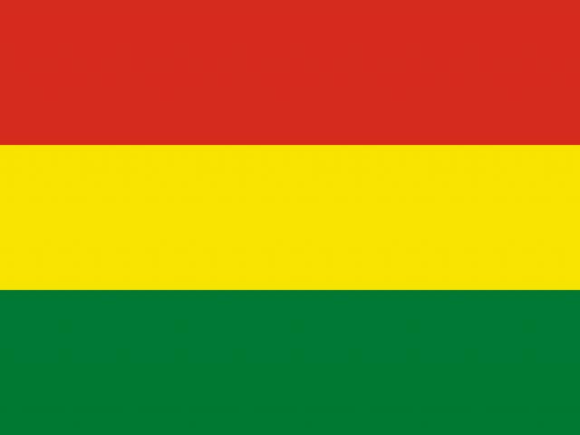 Informe Final: Misión de Observación Internacional. Elecciones Generales 2020. Estado Plurinacional de Bolivia